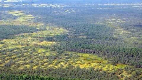 Соблюдения экобаланса на территории УрФО обсудят на экологической конференции в Ханты-Мансийске